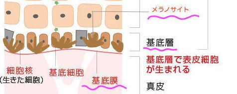kiteisou のコピー